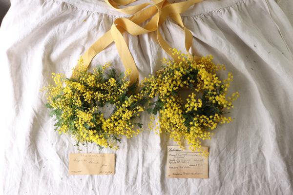 花とアンティークと 第7回(後編)|1本でも存在感のあるミモザ。大胆に見せたいときは単色リースに、花摘みアレンジなら分量は控えめに。