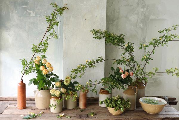 花とアンティークと 第11回(前編)|別格の存在感を放つバラ。だからこそ、あえて生活雑器や鉢物でラフに活けてみる。