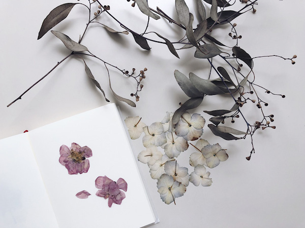 30min.creation 第9話(前編)押し花づくり|ノートを開けば、たくさんの記憶と気持ちが甦る。押し花は過去の自分からの伝言のよう。