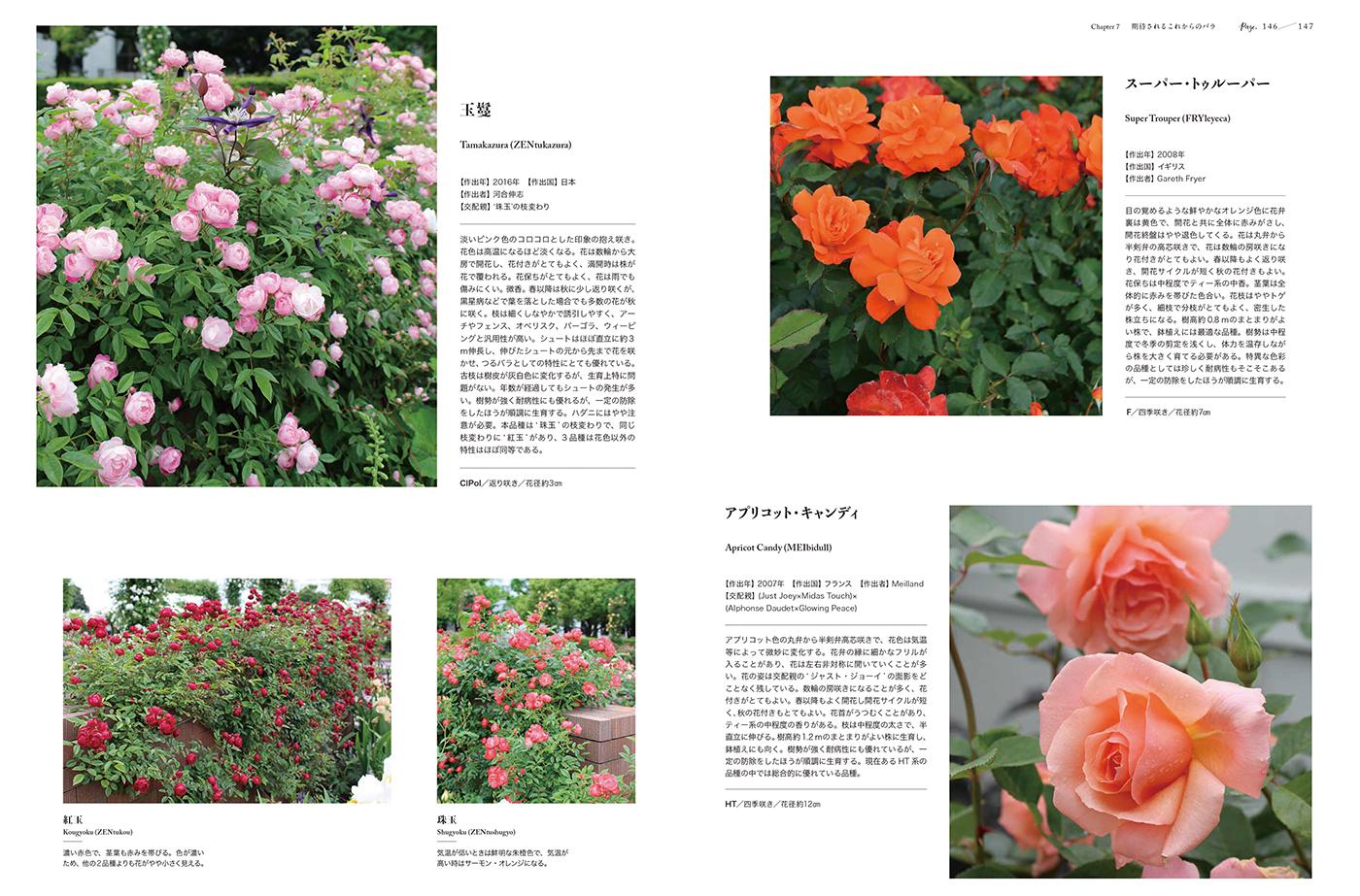 美しく育てやすいバラ銘花図鑑