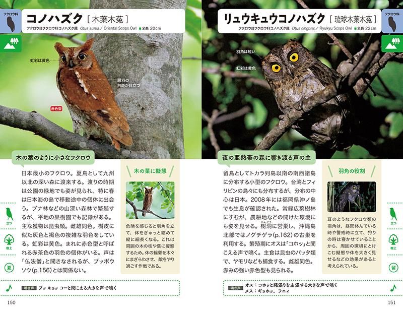 街・野山・水辺で見かける野鳥図鑑