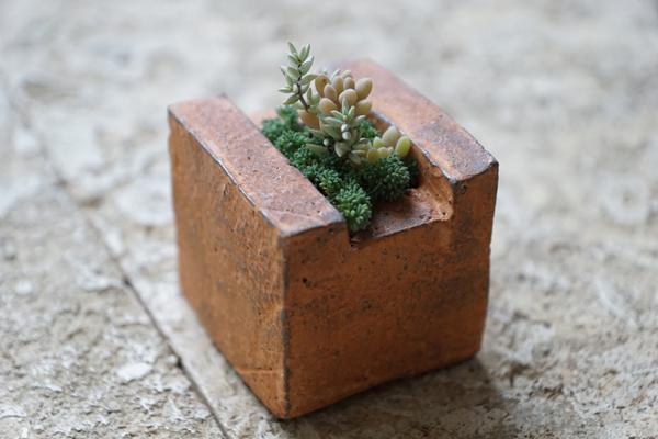 植物と人をつなぐもの 第10話(後編)|「レンガに生きる小さな命」。僕が感じたニューヨークを多肉植物で表現したら、こうなった。