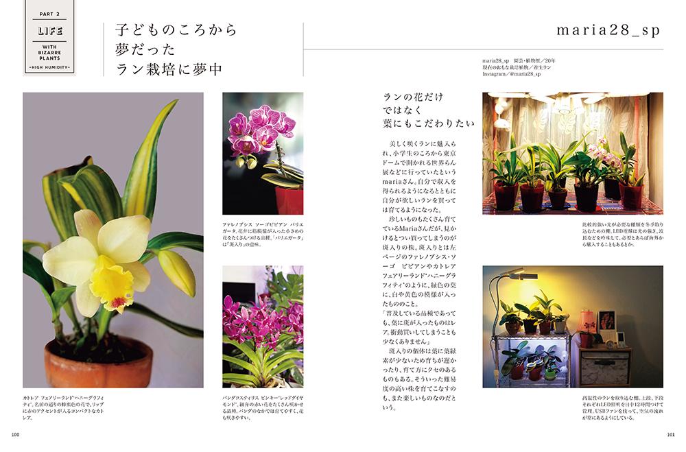 珍奇植物 LIFE ビザールプランツと暮らすアイデア