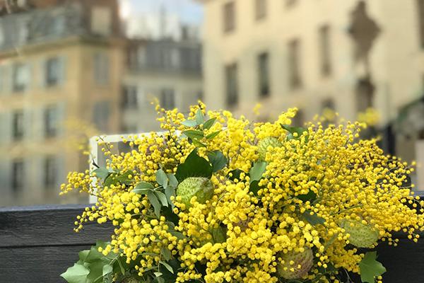パリスタイルで愉しむ 花生活12か月 第2話 ミモザのアレンジメント