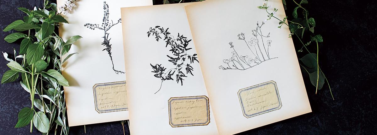 HUTTE.加藤絵利子さん(後編)|布やガラス、プラスチックにも。手彫りスタンプで軽やかに取り入れる、植物の美しい輪郭