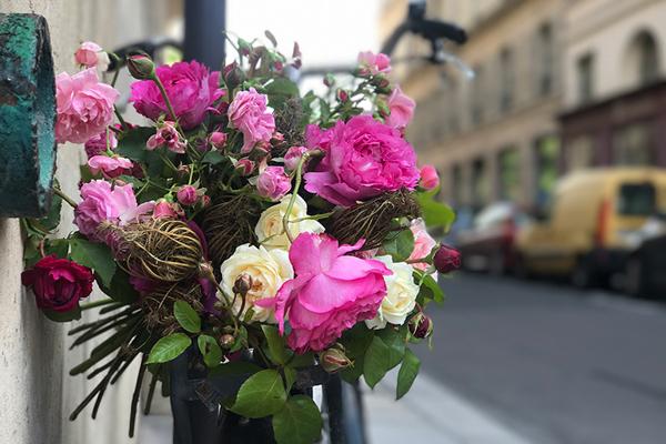 パリスタイルで愉しむ 花生活12か月 第9話 ローズ・ド・ジャルダン
