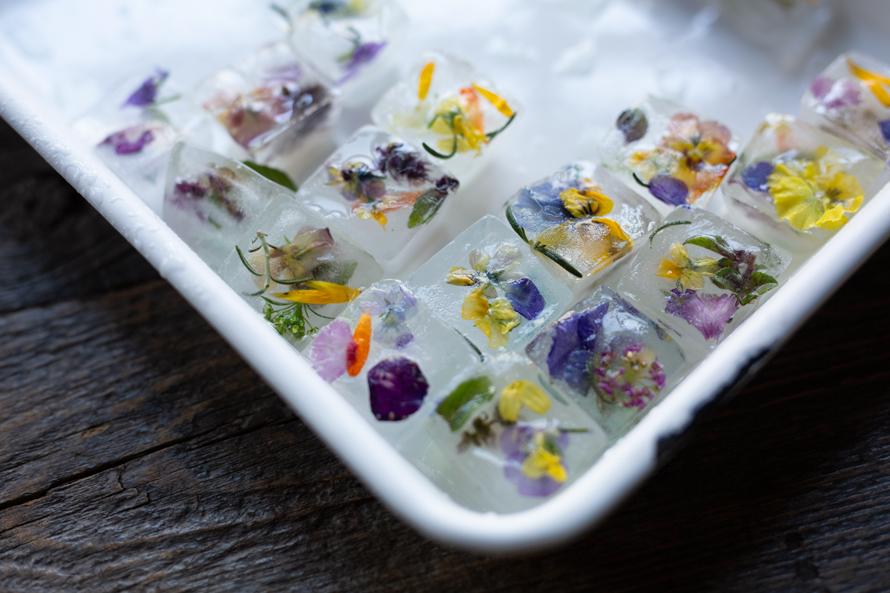ハーブ入りの花氷で涼を呼ぶ。『二十四節気 暦のレシピ』は暮らしを快適にするアイデアの宝庫