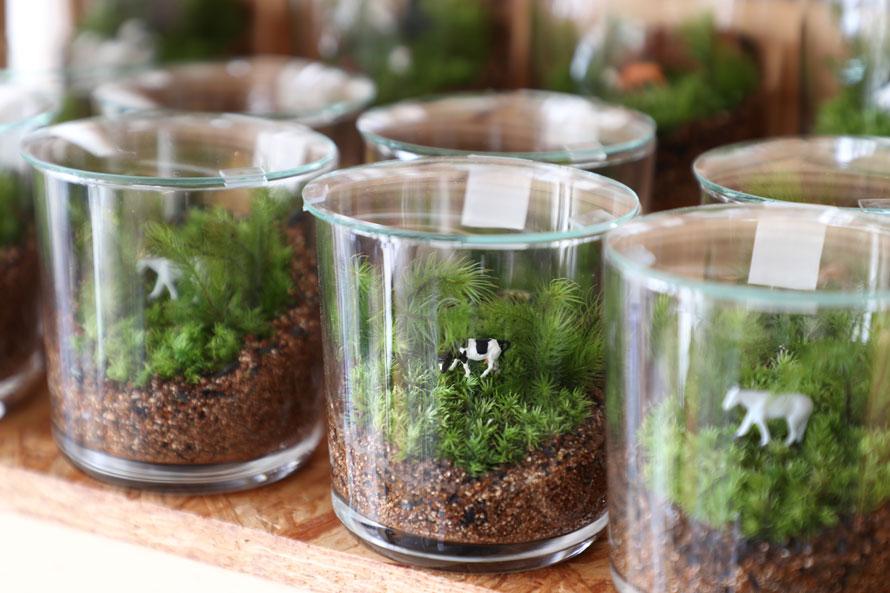 川本毅さん(前編)|ガラス容器の中に表現する大自然のストーリー。つくって育てる苔のテラリウム