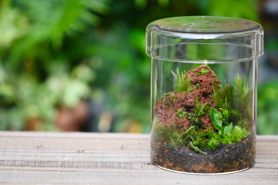 暮らしに植物を。ボタニカル体験が楽しめるワークショップ&イベント「KABOLO Vol.4」 2020.10.26(Mon)-11.1(Sun) 東京