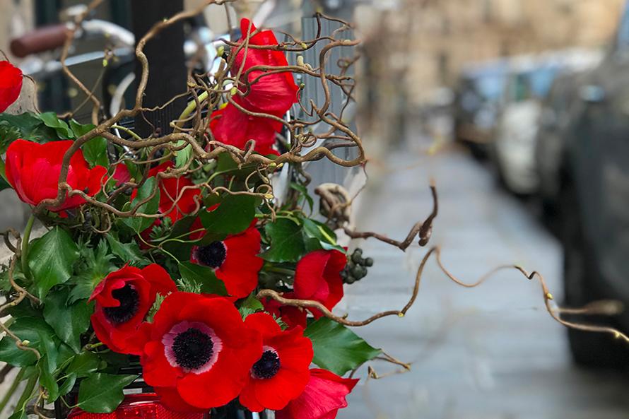 パリスタイルで愉しむ 花生活12か月 第22話 アネモネと枝もの