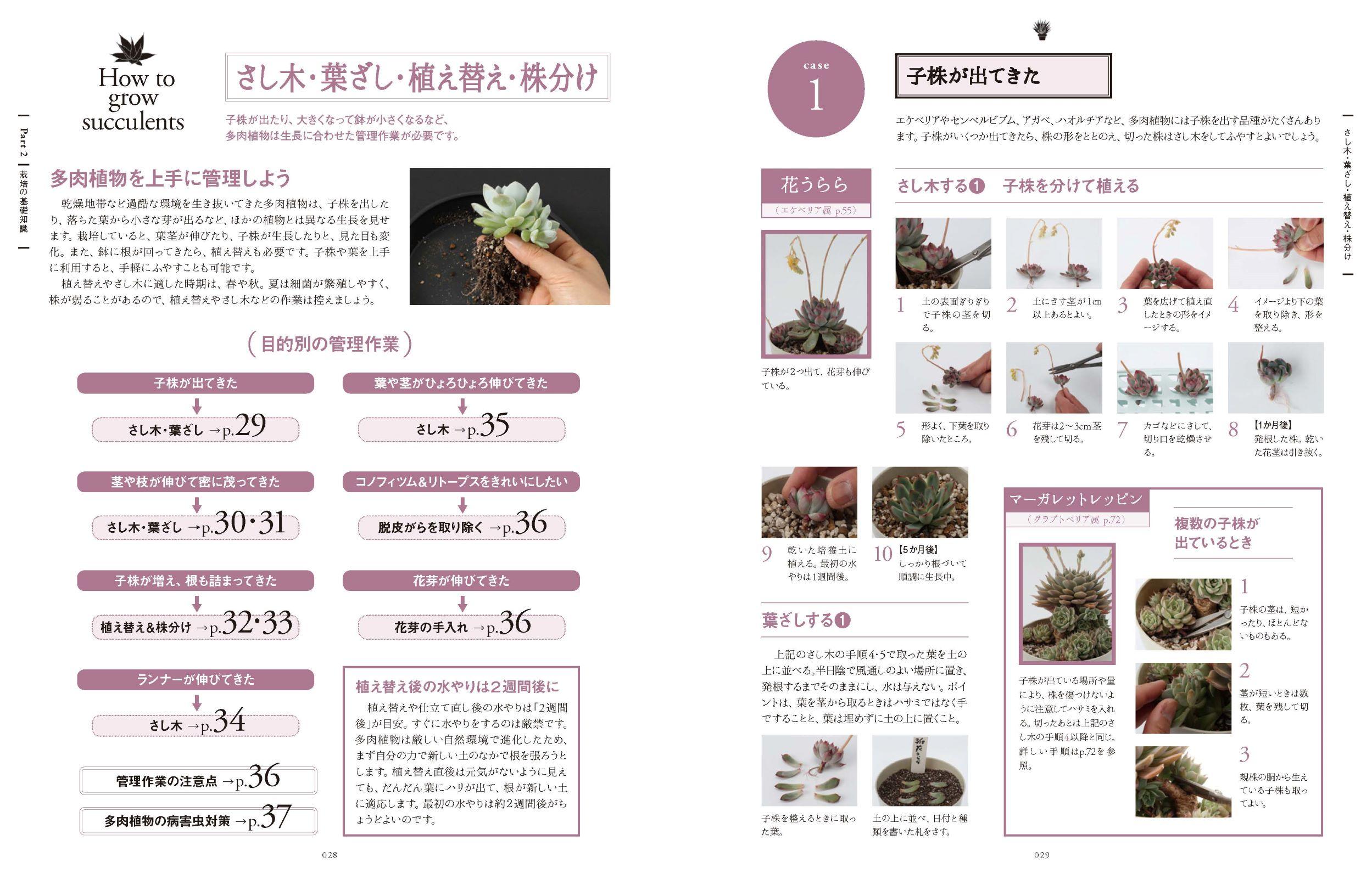 よくわかる多肉植物