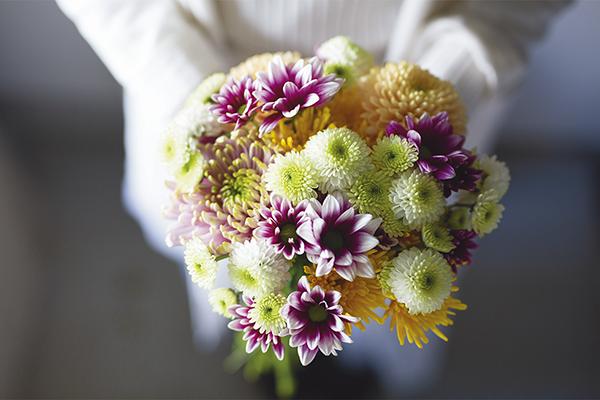 控えめな和菊から鮮やかな西洋菊まで、秋の花活けの代表格 寒露